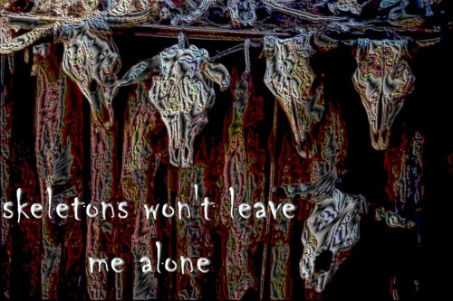skeletons wont leave me alone designer fabric iron-on
